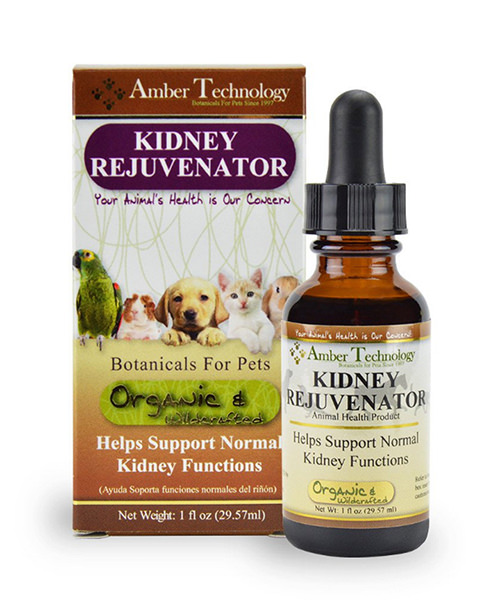 Kidney Disease: Why Natural Treatments Are Best